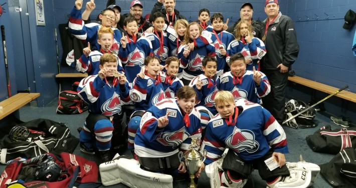 Avalanche Minor Sports Hockey Club Just Another Wordpress Site